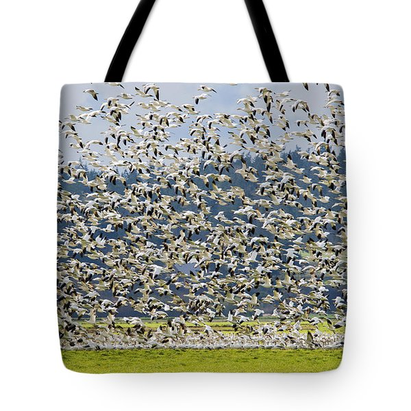Goose Storm Tote Bag by Mike Dawson