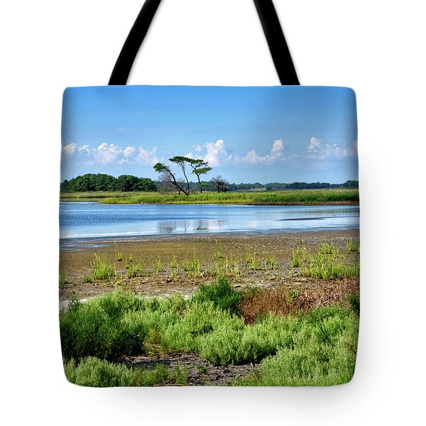 Tote Bag featuring the photograph Gordons Pond At Cape Henlopen State Park - Delaware by Brendan Reals