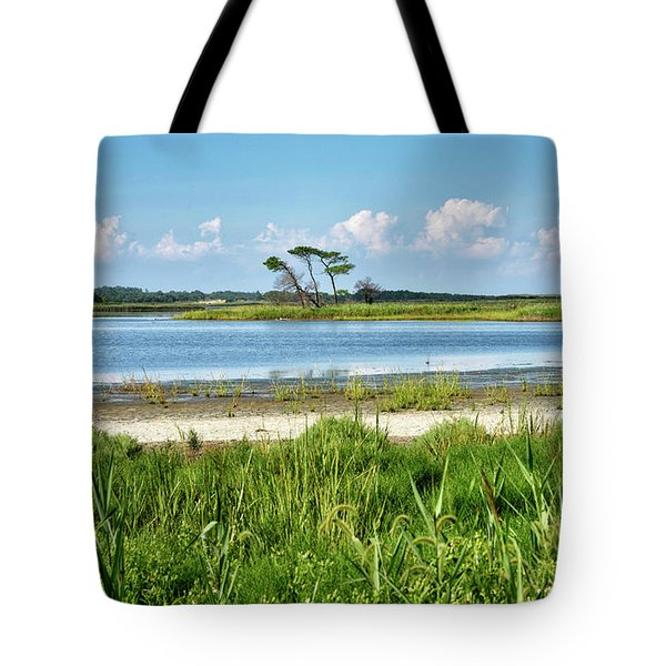 Tote Bag featuring the photograph Gordons Pond - Cape Henlopen State Park - Delaware by Brendan Reals