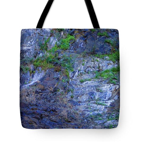 Gorge-2 Tote Bag by Dale Stillman