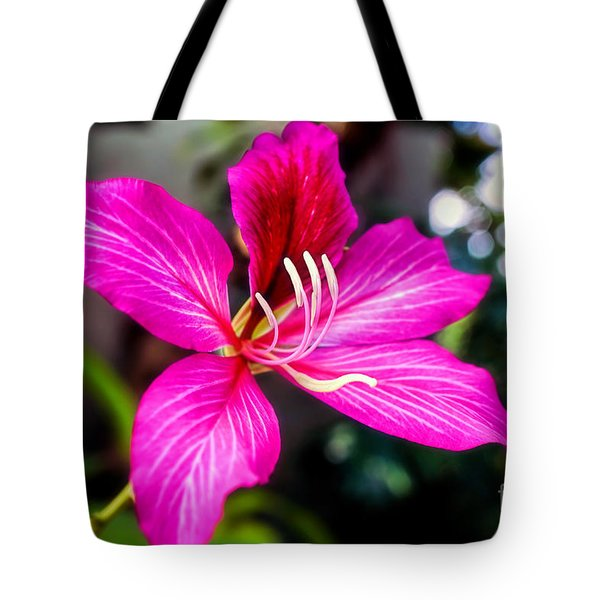 Gorgeous Bauhina Tote Bag by Sue Melvin