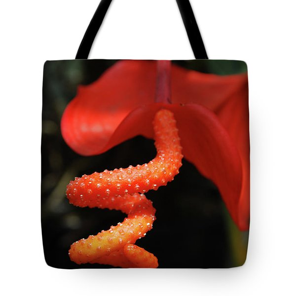Gorgeous Orange Tropical Flower Blossom Tote Bag