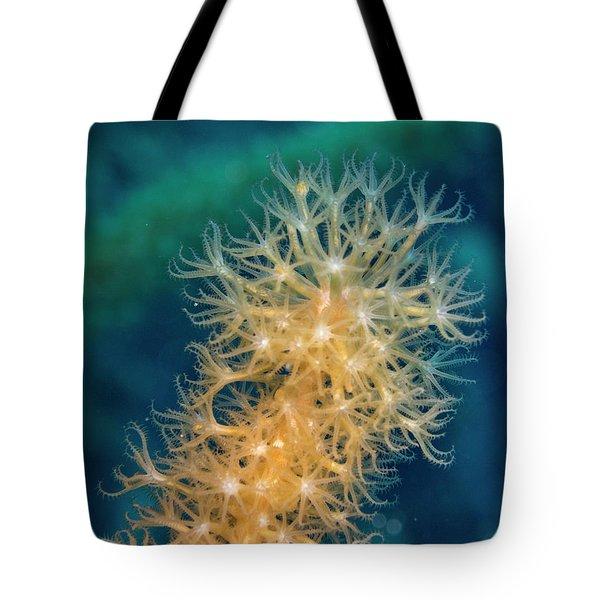 Gorgonian Detail Tote Bag