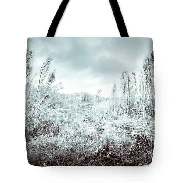 Gormanston Snowscape Tote Bag