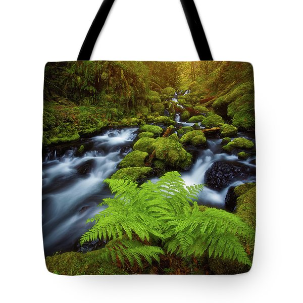 Tote Bag featuring the photograph Gorton Creek Fern by Darren White
