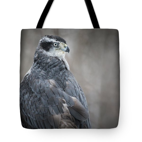 Goshawk Tote Bag by Angie Rea