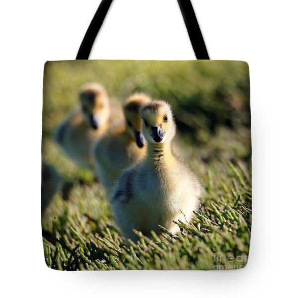Gosling March Tote Bag