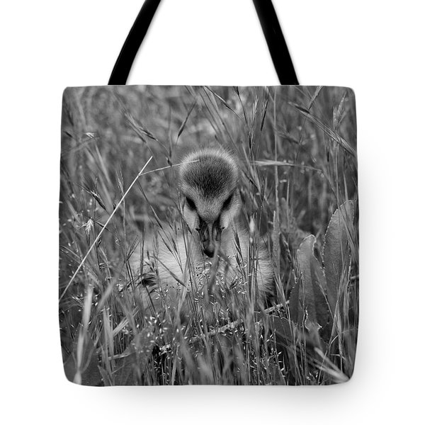 Tote Bag featuring the photograph Gosling Serenity by Sue Harper