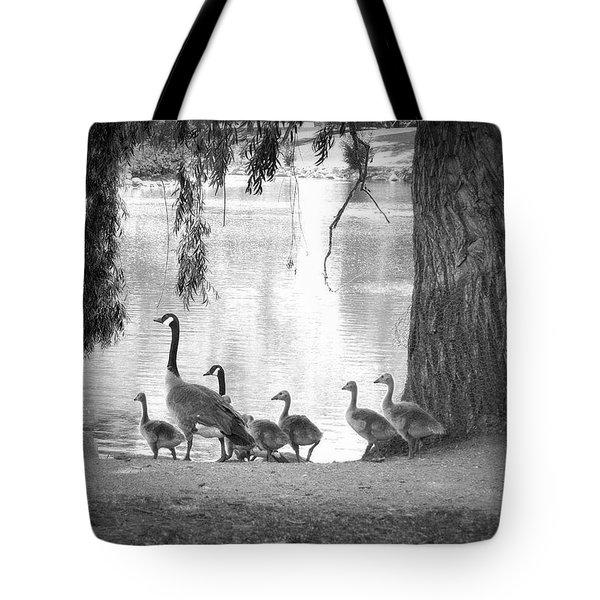 Goslings Bw7 Tote Bag by Clarice Lakota
