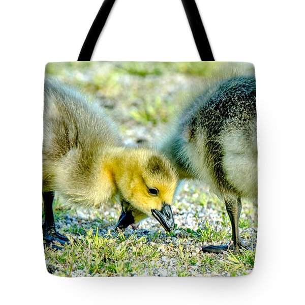 Goslings Snacking Tote Bag