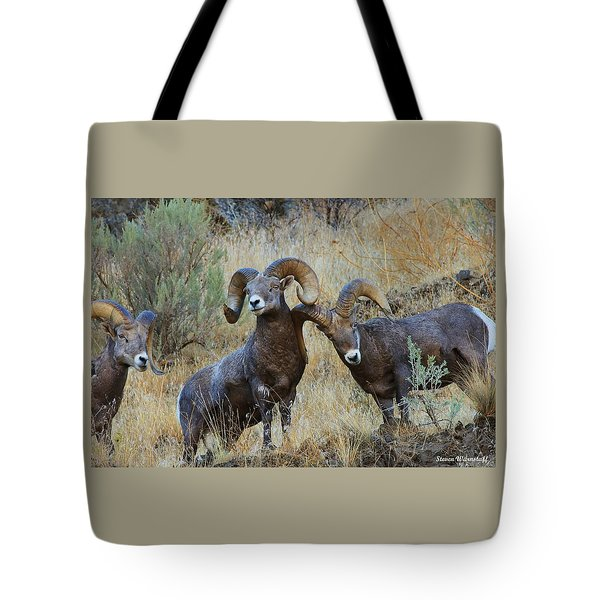 Got An Itch... Tote Bag by Steve Warnstaff