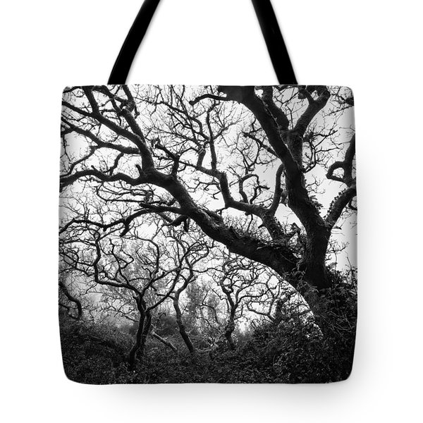 Gothic Woods II Tote Bag by Marco Oliveira