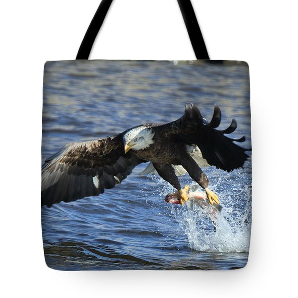 Tote Bag featuring the photograph Grabbing Some Dinner by Coby Cooper