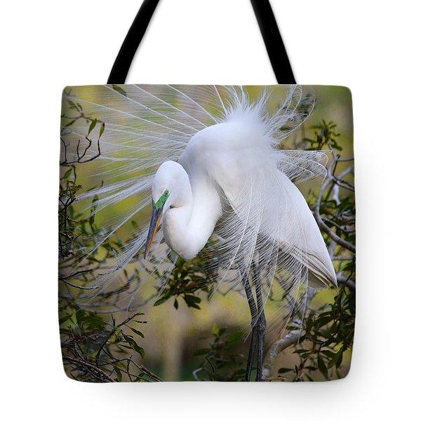Grace In Nature Tote Bag