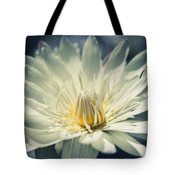 Tote Bag featuring the photograph Grace by Laura Roberts
