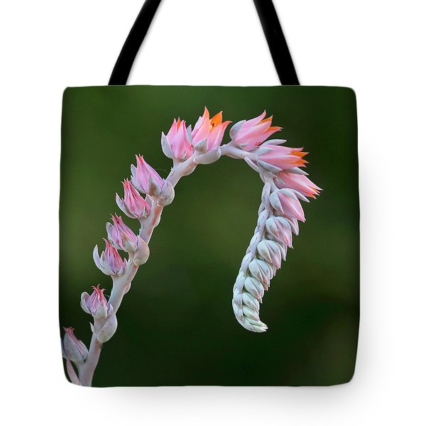Tote Bag featuring the photograph Graceful by Elvira Butler