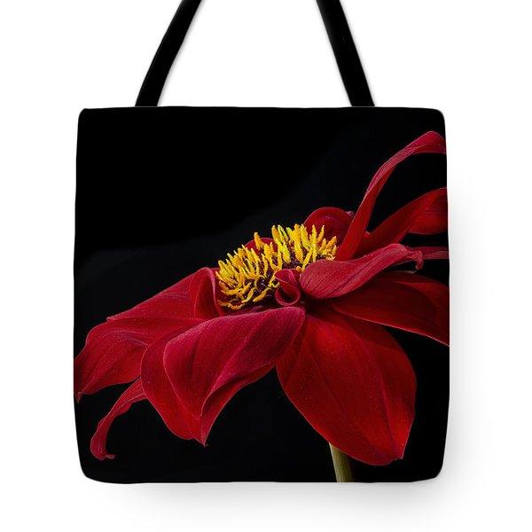 Graceful Red Tote Bag by Roman Kurywczak