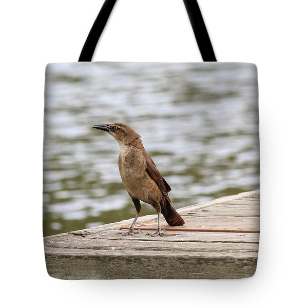Grackle On A Dock Tote Bag