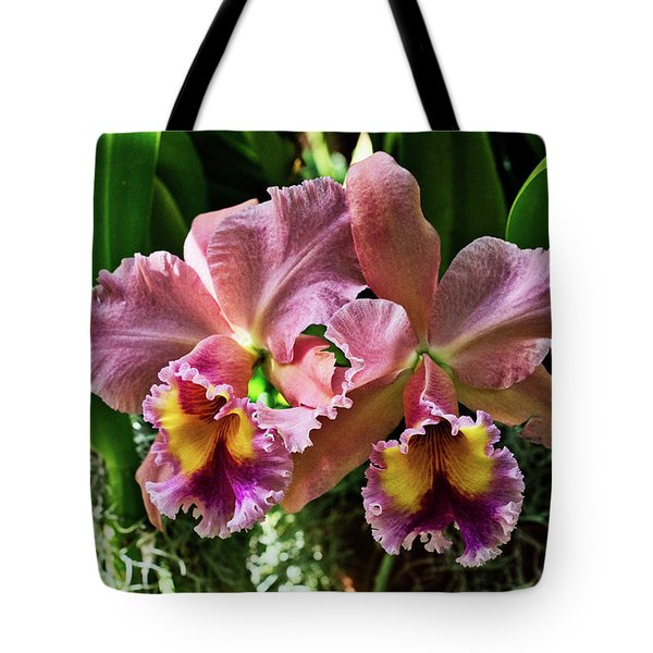 Tote Bag featuring the photograph Graduation Ball by Richard Goldman