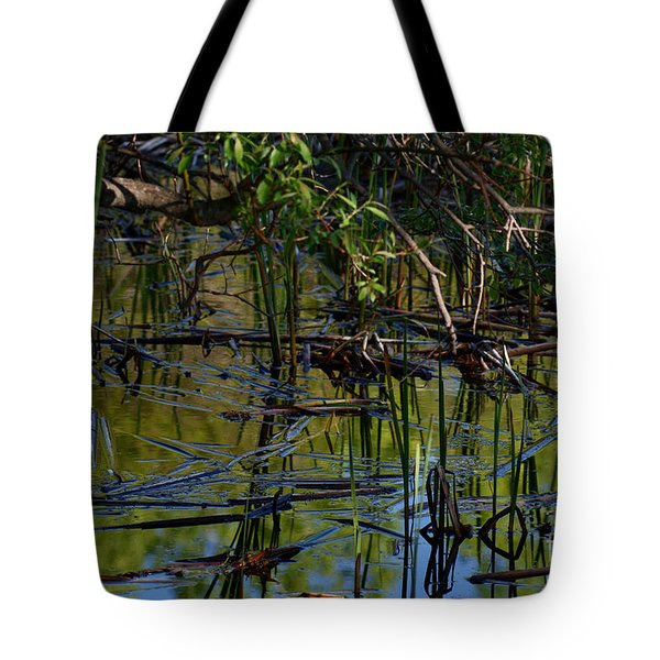 Grand Beach Marsh Tote Bag by Joanne Smoley