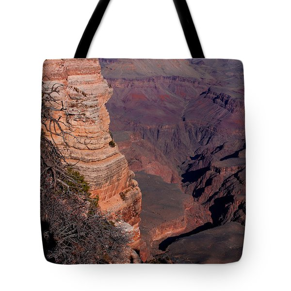 Tote Bag featuring the photograph Grand Canyon 11 by Donna Corless