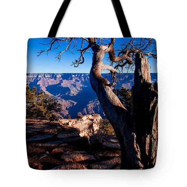 Tote Bag featuring the photograph Grand Canyon 27 by Donna Corless