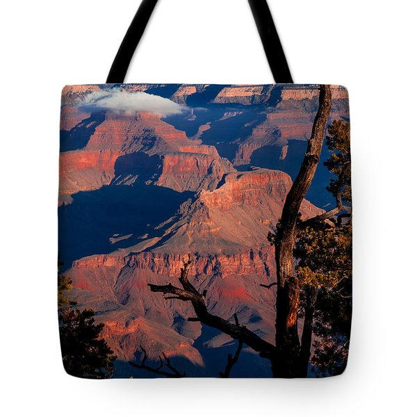 Tote Bag featuring the photograph Grand Canyon 30 by Donna Corless