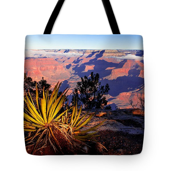 Tote Bag featuring the photograph Grand Canyon 31 by Donna Corless