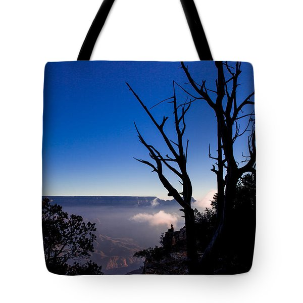Tote Bag featuring the photograph Grand Canyon 34 by Donna Corless
