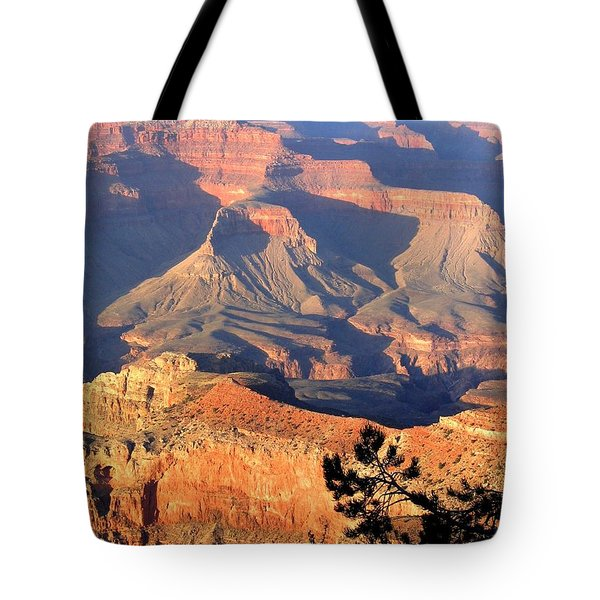 Grand Canyon 50 Tote Bag by Will Borden
