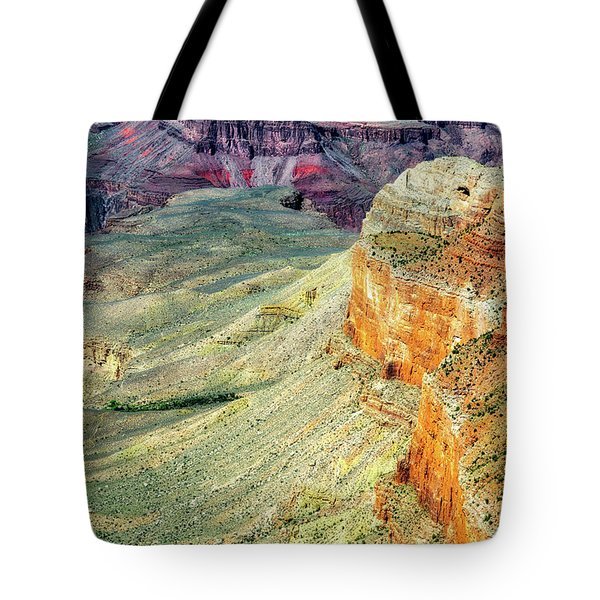 Grand Canyon Abstract Tote Bag by Robert FERD Frank