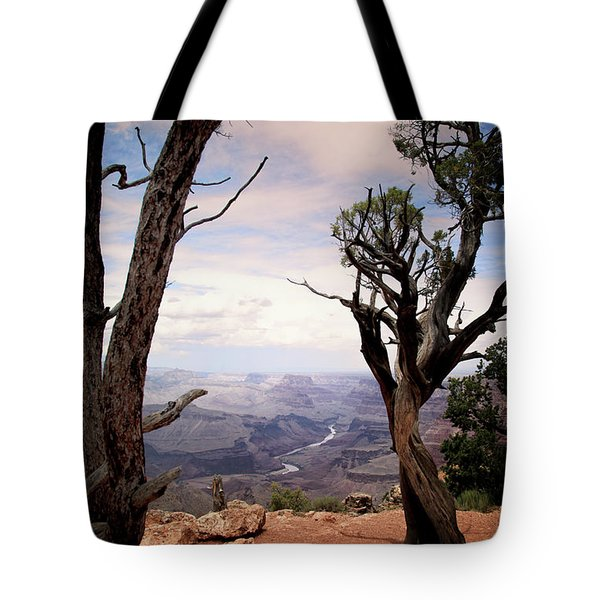 Grand Canyon, Az Tote Bag by James Bethanis