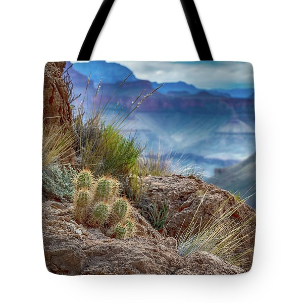 Tote Bag featuring the photograph Grand Canyon Cactus by Phil Abrams