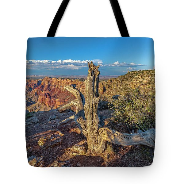 Tote Bag featuring the photograph Grand Canyon Old Tree by Steven Sparks