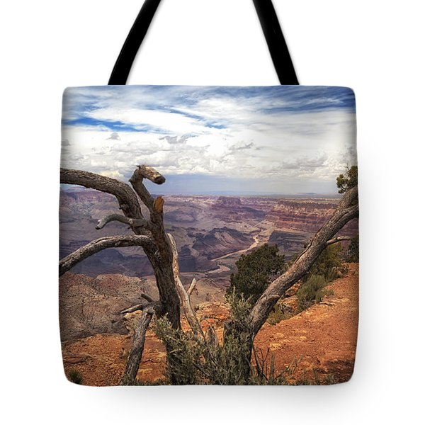 Grand Canyon River View Tote Bag by James Bethanis