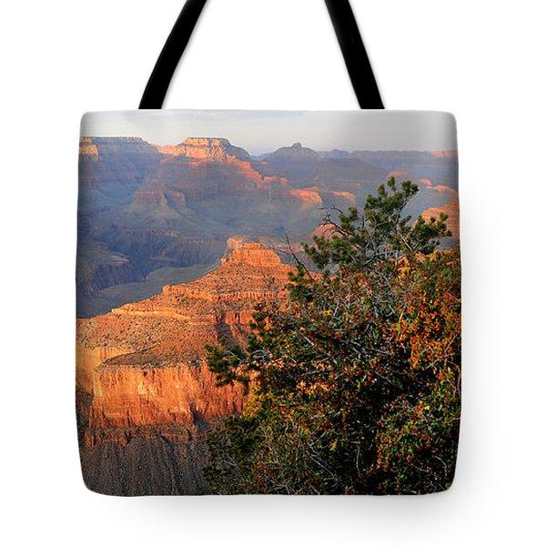 Grand Canyon South Rim - Red Berry Bush Along Path Tote Bag