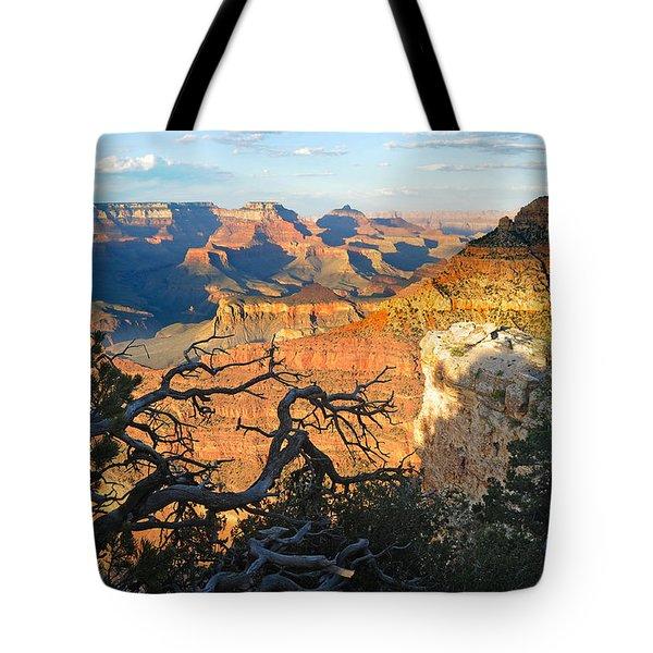 Grand Canyon South Rim - Sunset Through Trees Tote Bag