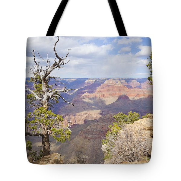 Tote Bag featuring the photograph Grand Canyon View by Chris Dutton