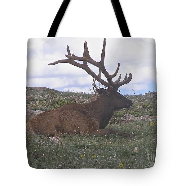 Grand Dad  Tote Bag