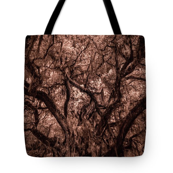 Tote Bag featuring the photograph Grand Daddy Oak Tree In Infrared by Louis Ferreira