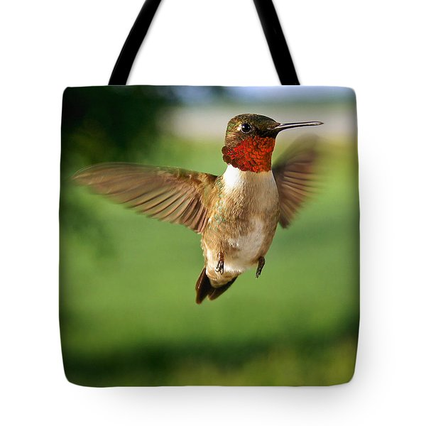 Grand Display Tote Bag by Bill Pevlor