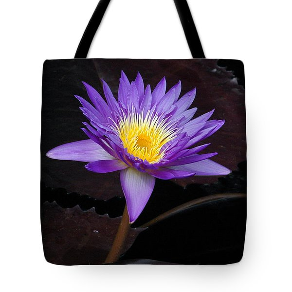 Tote Bag featuring the photograph Grand Entrance by Byron Varvarigos