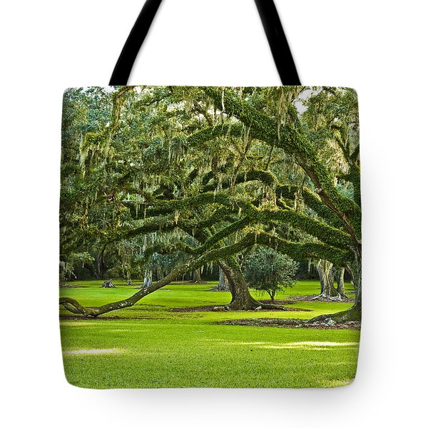 Grand Lady Tote Bag by Scott Pellegrin