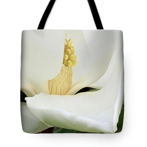 Grand Magnolia Tote Bag