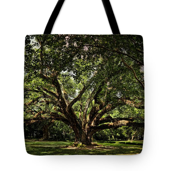 Grand Oak Tree Tote Bag by Judy Vincent