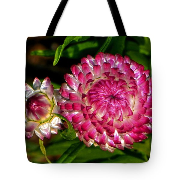 Tote Bag featuring the photograph Grand Opening - Before And After 002 by George Bostian