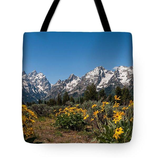 Grand Teton Arrow Leaf Balsamroot Tote Bag by Brian Harig