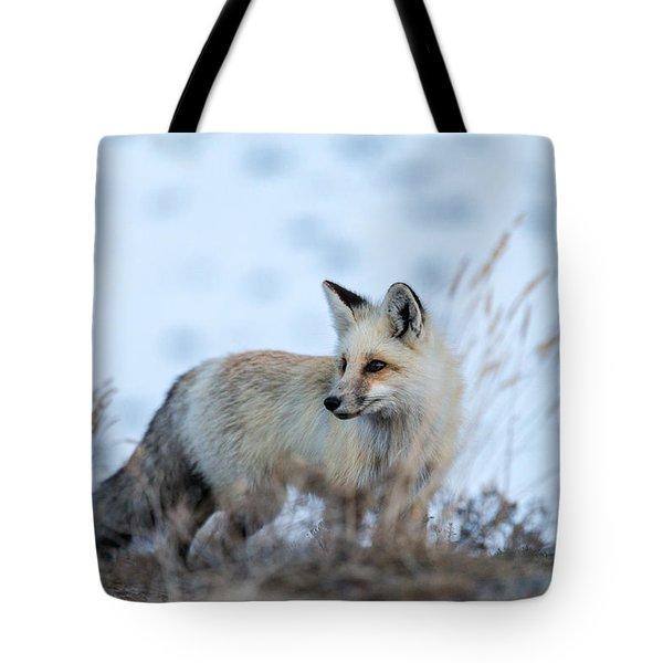 Grand Teton Fox Tote Bag