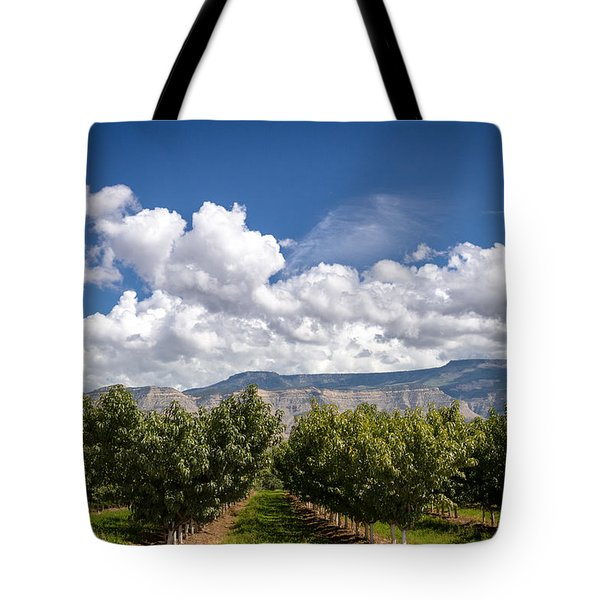 Grand Valley Orchards Tote Bag by Teri Virbickis