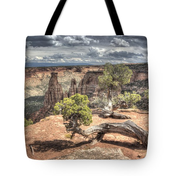 Tote Bag featuring the photograph Grand View I by ELDavis Photography